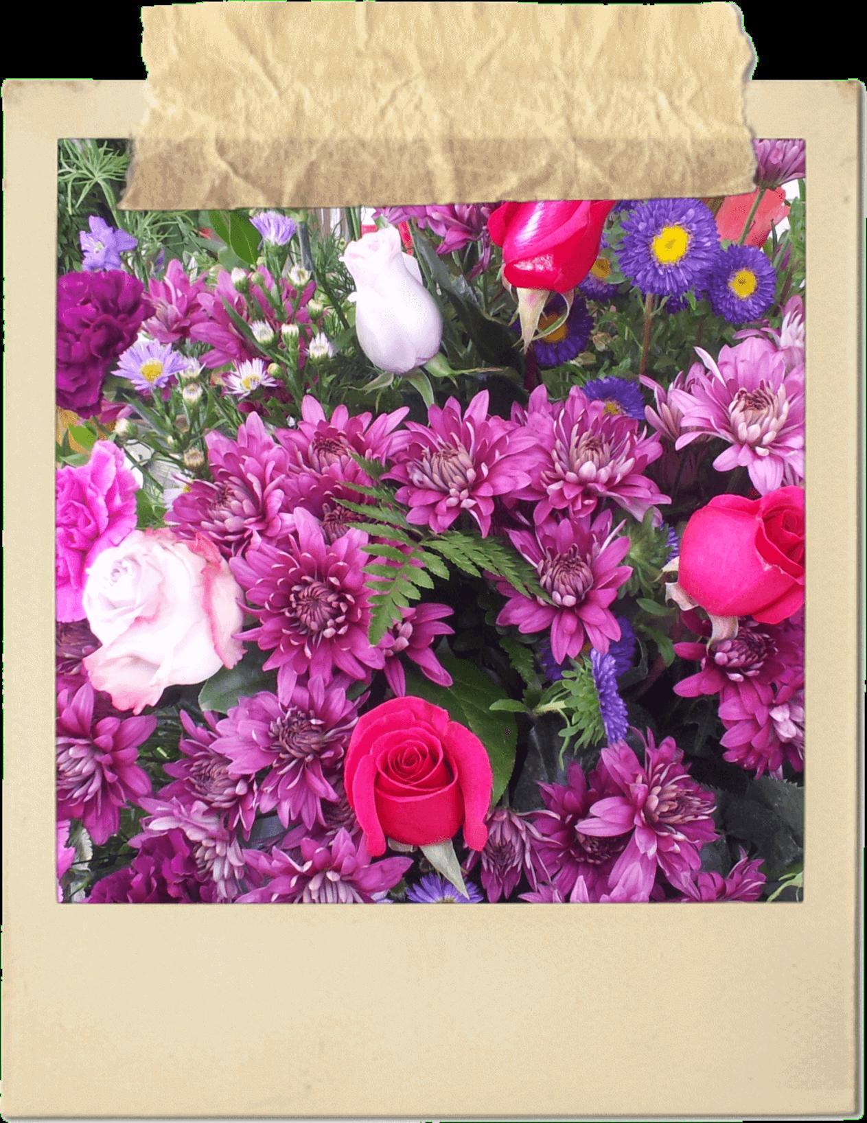 pink-purple-flowers-polaroid