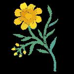 florist in demand, floral designer